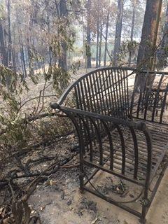 Bushfire 2020