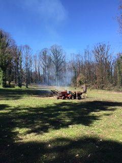 Bushfire cleanup